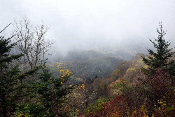 Ilze E Valente – Blue Ridge Mountains 2