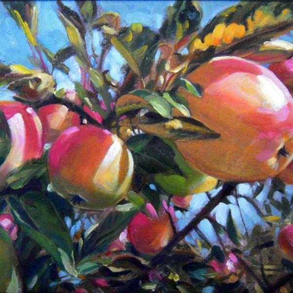 Thomas Buchs – Pink Ladies