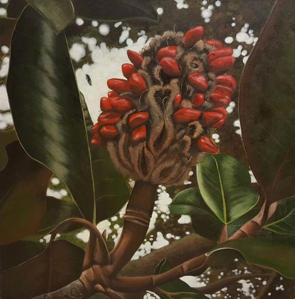 Amanda R. Henslee – Magnolia Seed Pod