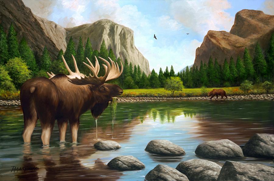 Garafola_Ralph_Moose in Yosemite