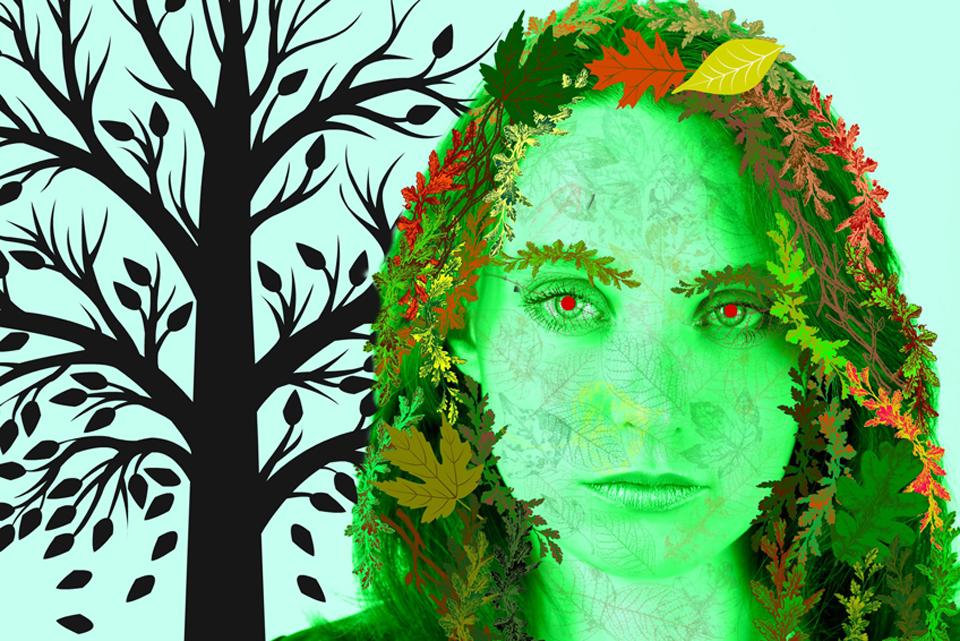 lavendar_diamante_keeper-of-autumn