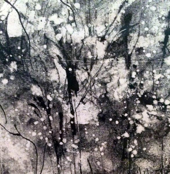 """Terry Berkowitz – """"Winter Cotton"""""""