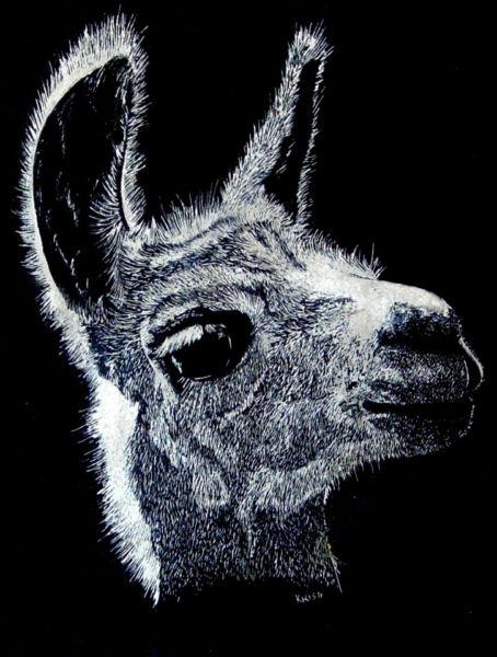 """Kristi Richter – """"Llama Mama"""""""