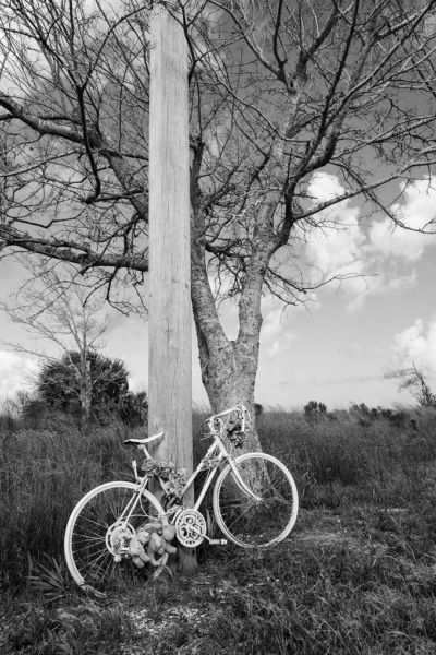"Les Schmidt – ""Ghost Bike"""