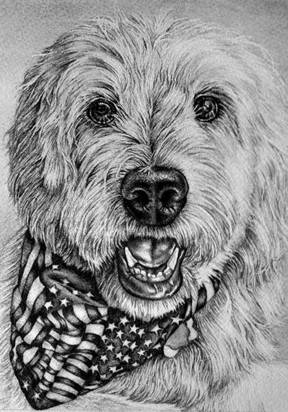 "Lisa Szkolnik – ""Portrait of Goldendoodle"""