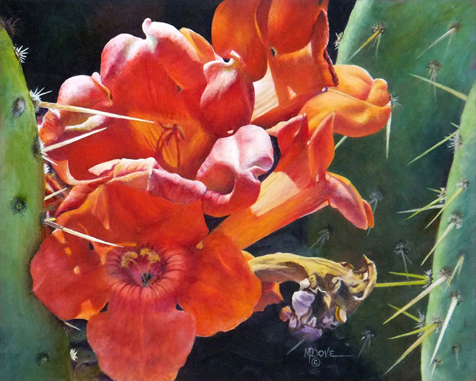 HM3_Mary Dove_Trumpet Vine and Donkey Ears Cactus_8x10_Oil Painting