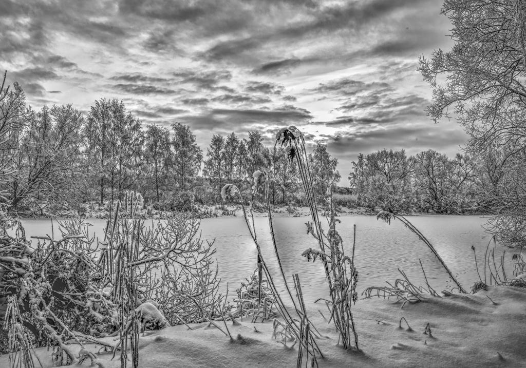 Sohlman snow-1-BW-