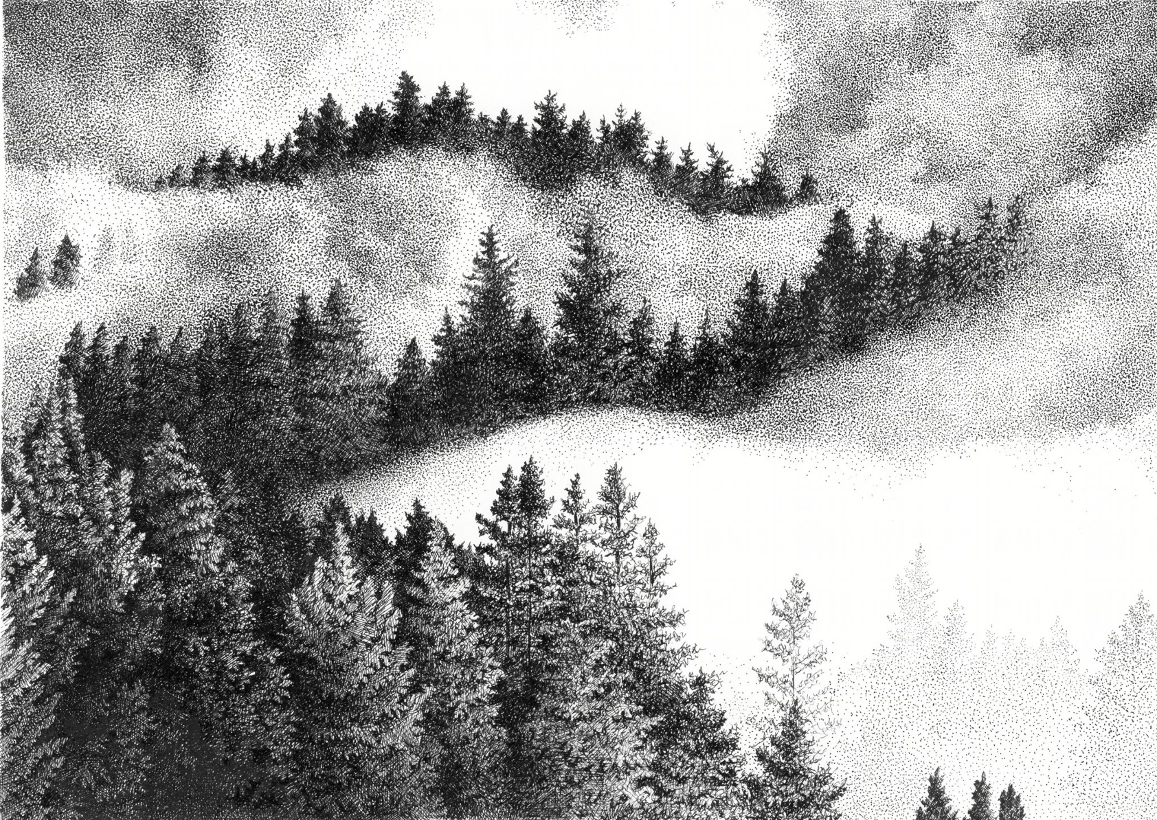 Topjian-Searle_Stacy_Smoky-Mountain-Morning