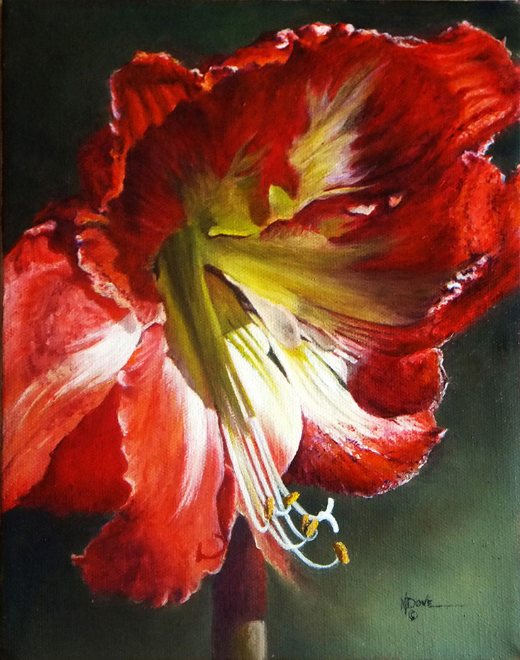 2nd Place Dove_Mary_My Amaryllis in Full Morning Glory_Oil Painting