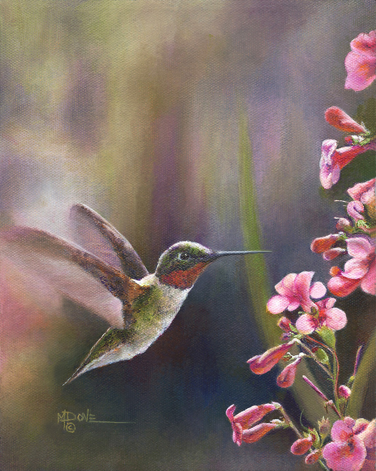 Dove_Mary_A Hummingbird WOW, Banquet Time_Oil painting_ (2)